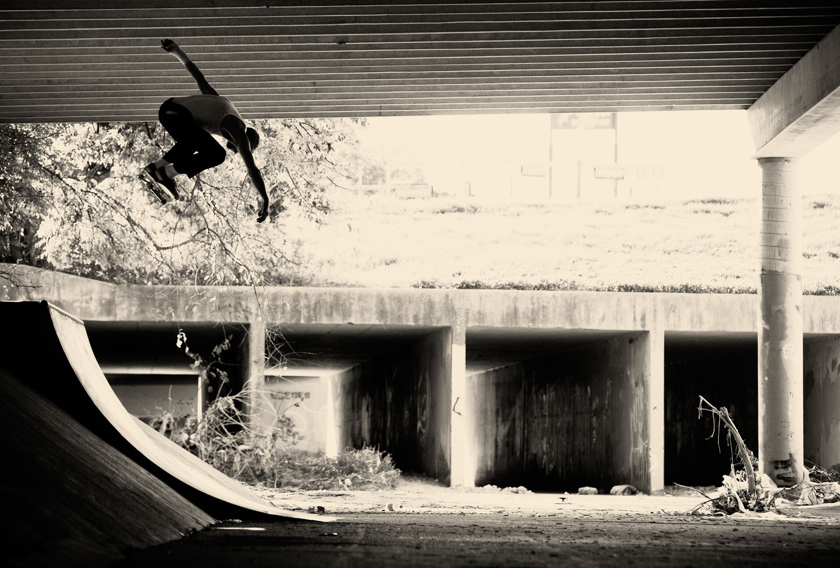 jason_dill_bs_ollie